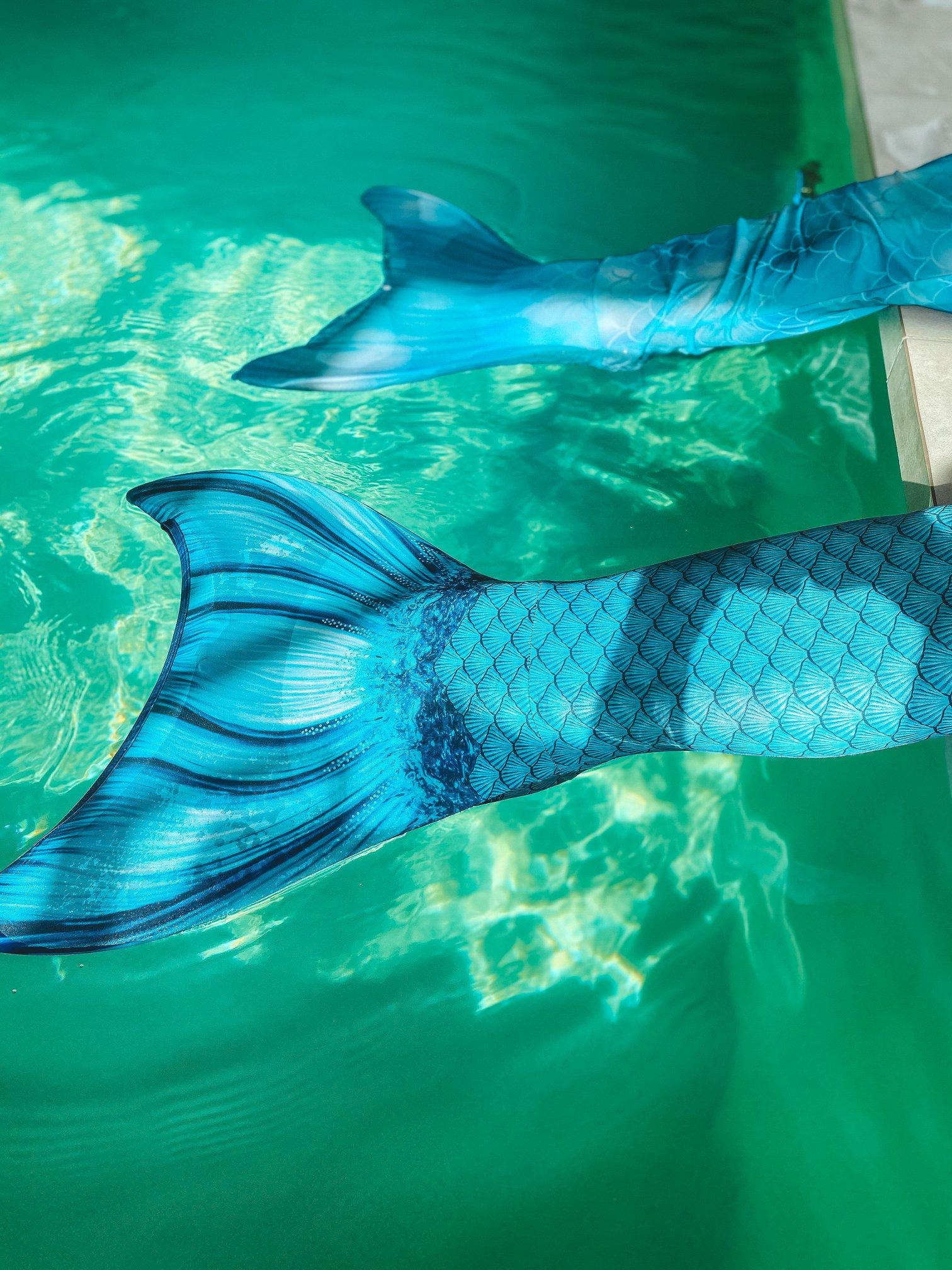 aquadream-temploux.be_piscine-bio_Aquasirene-6